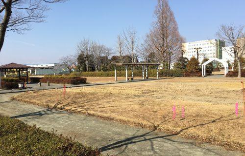 少年スポーツ広場